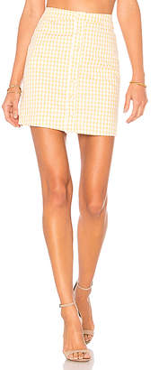 Privacy Please Carlsbad Skirt