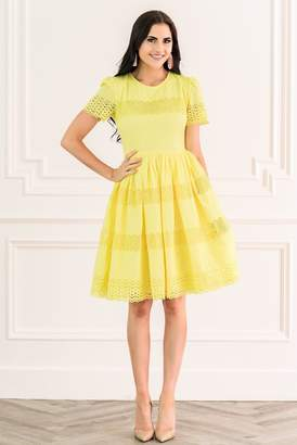 Rachel Parcell Citron Dress
