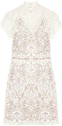 Catherine Deane Knee-length dresses