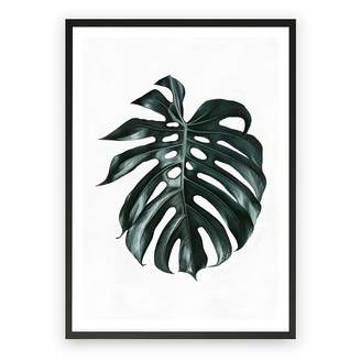Green & Black The Print Emporium Monstera Leaf Framed Art Print, Green, Black Frame 30x42cm