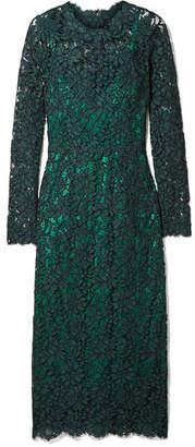 Dolce & Gabbana Corded Cotton-blend Lace Midi Dress - Emerald