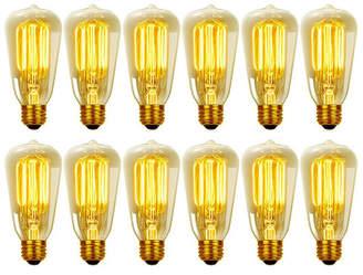 Globe Electric Company 40W E26 Dimmable Incandescent Edison Light Bulb