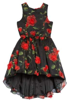Nanette Lepore Floral High/Low Fit & Flare Dress
