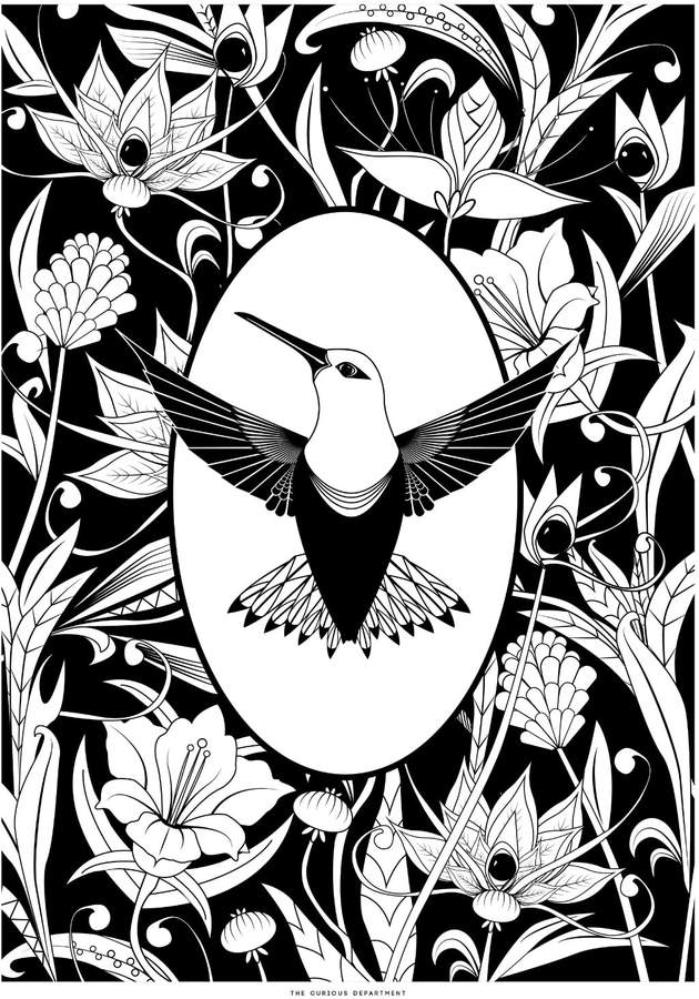 The Curious Department - Elemental Hummingbird Print Black & White
