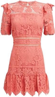 Saylor Sigourney Lace Dress