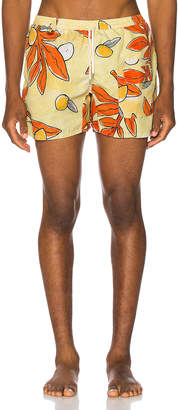 Jacquemus Printed Shorts in Multi | FWRD
