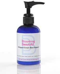 Motherhood Blooming Beautiful Whipped Cream Bust Support
