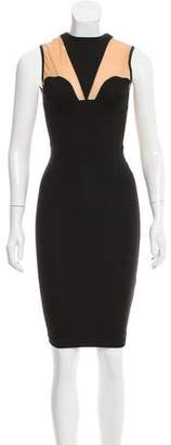 Torn By Ronny Kobo Mesh-Accented Sleeveless Dress