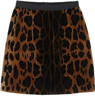 Dolce & Gabbana Skirts - Item 35364527AB