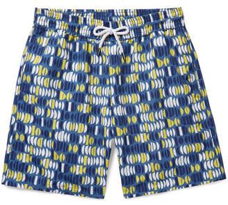 Frescobol Carioca Aquarela Long-Length Printed Swim Shorts