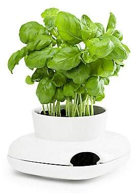 Sagaform Small Herb Pot