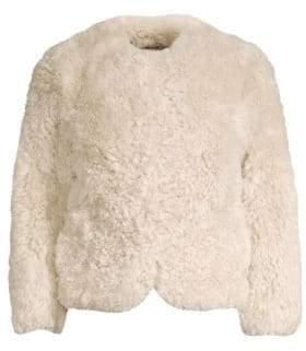 Glamour Puss Glamourpuss Sheared Tibetan Lamb Collarless Jacket
