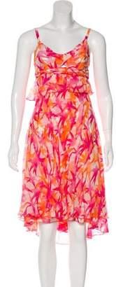 Diane von Furstenberg Betsy Silk Dress