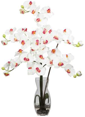 Nearly Natural nearly natural Large Liquid Illusion Silk Phalaenopsis Floral Arrangement