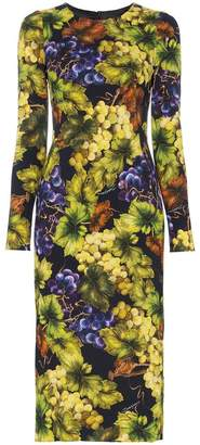 Dolce & Gabbana Grape and Floral Print Midi-Dress