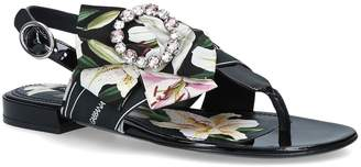 Dolce & Gabbana Lilium Bianca Sandals