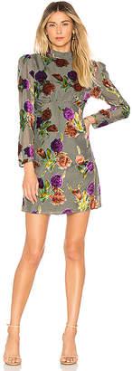 Saylor Suri Dress