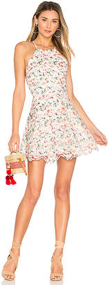 Tularosa Cyrus Dress in Ivory $188 thestylecure.com
