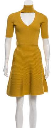 Cushnie et Ochs Flared Knit Dress