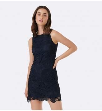 Ever New Flick Lace Pencil Dress