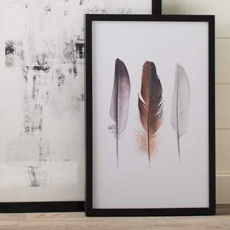 Graham & Brown Spring 2015 Feather Trio Framed Graphic Art
