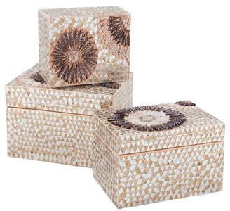 Medium Capiz Shell Urchin Boxes