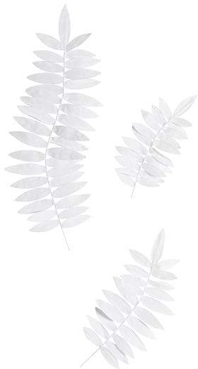 Crepe Paper Palm Fronds, Set Of 3