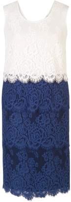 Chesca Eyelash Trim Scallop Lace Dress