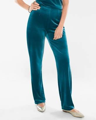 Travelers Collection Velvet No Tummy Pants