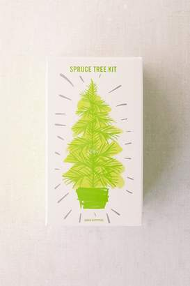 Urban Outfitters Grow Your Own Spruce Tree Kit