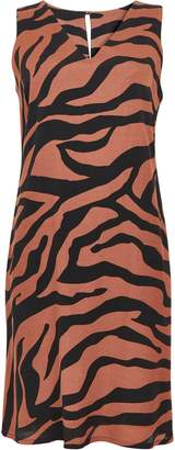 WallisWallis TALL Rust Zebra Print Shift Dress