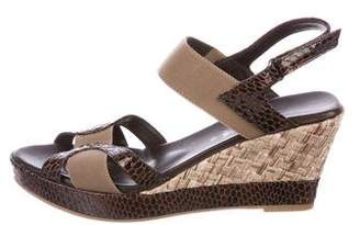 Aquatalia Colorblock Wedge Sandals