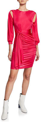 Pinko Alessia Long-Sleeve Dress