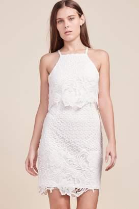 BB Dakota Lace Bodycon Dress