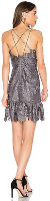 Saylor Alayna Lace Dress
