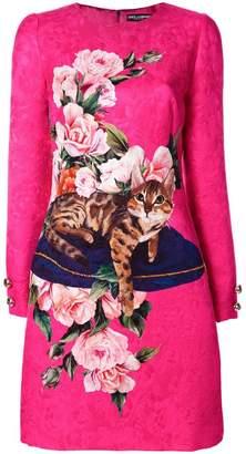 Dolce & Gabbana Zambia print dress