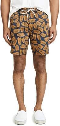 Barney Cools Navy Fern Amphibious 17 Shorts