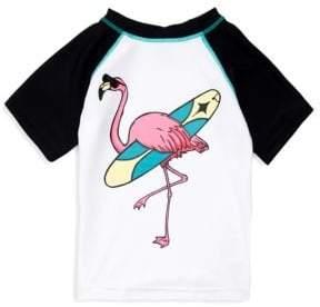 Appaman Baby Boy's, Little Boy's & Boy's Flamingo Rashguard