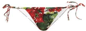 Dolce & Gabbana Portofino Floral Print Bikini Bottoms - Womens - Red Print