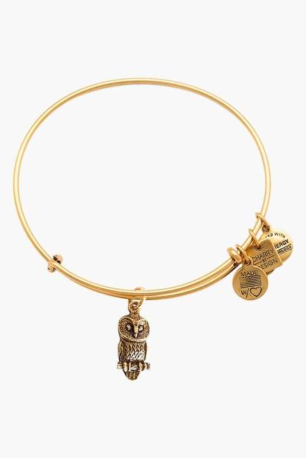 Alex and Ani Ode to the Owl Charm Expandable Wire Braeclet