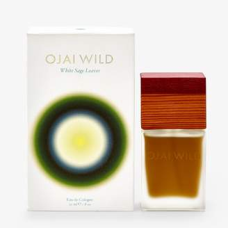 Ojai Wild White Sage