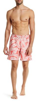 Trunks San O Short Bungalow Palm Swim Trunk $54 thestylecure.com