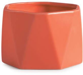 ILLUME Sweet Hibiscus Dylan Ceramic Candle