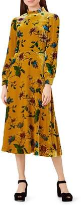 Hobbs London Velvet Floral Midi Dress