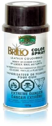 R & E Moneysworth & Best Brillo Leather/Vinyl/Plastic Color Re Spray Dye/Paint 12 oz