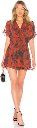 IRO Kizz Dress