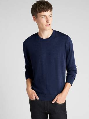 Gap Crewneck Pullover Sweater in Pure Merino Wool