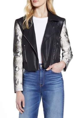 Halogen Contrast Sleeve Faux Leather Moto Jacket