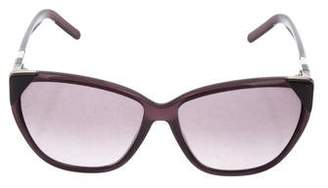 Chloé Acetate Tinted Sunglasses