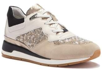 Geox Shahira Suede & Sequin Sneaker